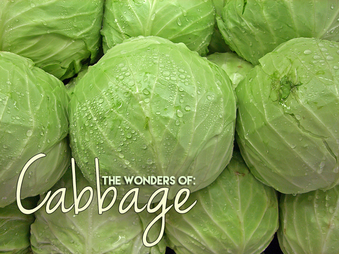 thewondersofcabbage