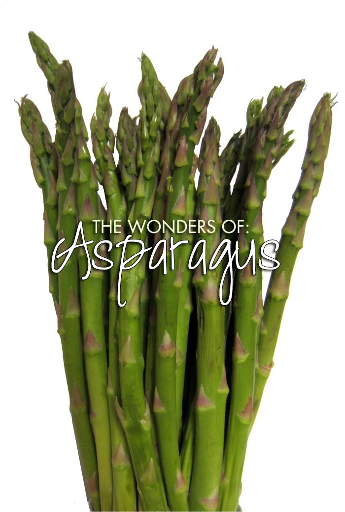 wondersofasparagus